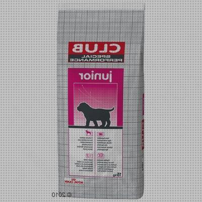 Review de royal canin maxi en zooplus royal en zooplus zooplus en zooplus royal canin maxi junior 15 3 kg en zooplus