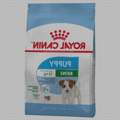 Review de royal canin puppy medium en zooplus royal en zooplus zooplus en zooplus royal canin puppy xsmall en zooplus