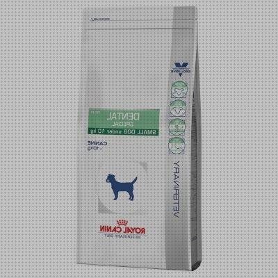 Todo sobre royal canin x small ageing 12 en zooplus royal canin ageing 12 en zooplus royal en zooplus royal canin satiety small dog en zooplus