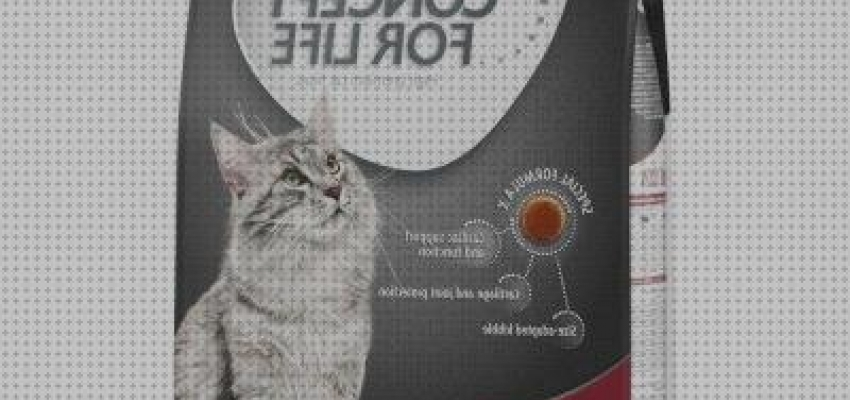 Los 4 Mejores Royal Canin Breed Maine Coon En Zooplus